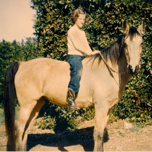 buck 1955