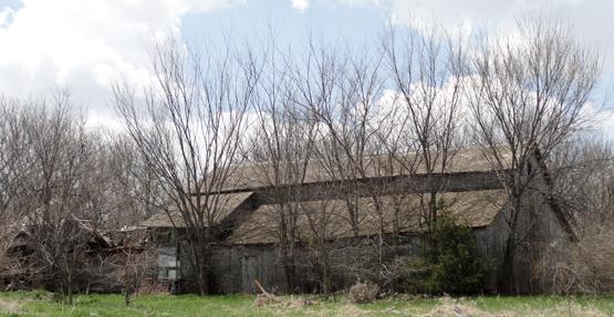 farm horse barn 2