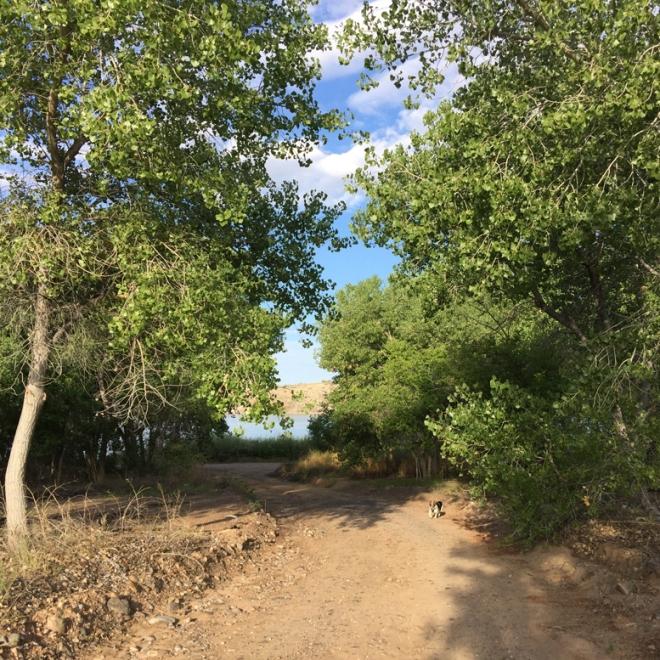 cl-cassie-cottonwoods-road