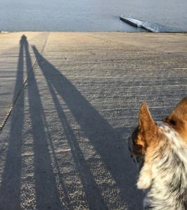 cl-long-shadows