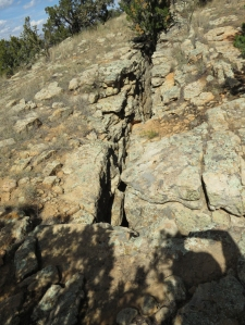 Crack near the top of the bluff - will be at the bottom within 100 years!